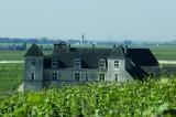 Atelier découverte nature des vins de Bourgogne