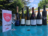les-vins-des-jeudis-vin-84226