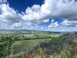 panorama-talant-kws-140917