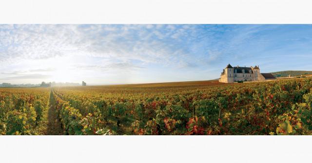 balade-oenologique-dans-les-vignes-et-degustation-decouverte-des-terroirs-et-climats-du-vignoble-de-la-cote-de-nuits-76