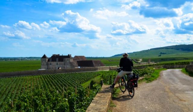 tours-en-velo-dans-le-vignoble-82334