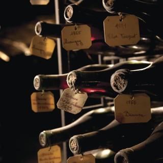 circuit-dans-le-vignoble-pinot-chardonnay-cote-de-nuits-64